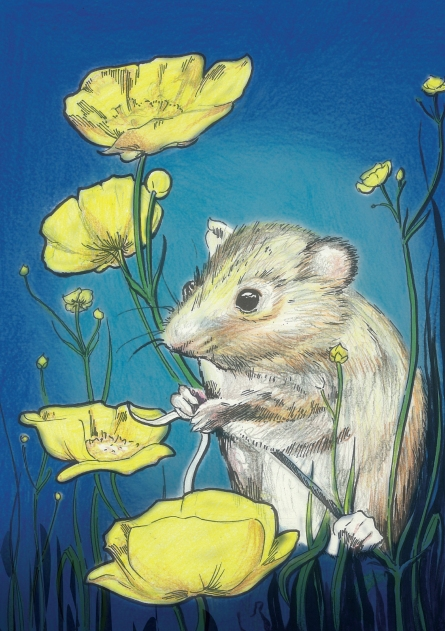 Field mouse from 'The Air went looking for a voice' by Patricia Dye